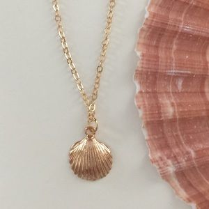 Dainty Gold Shell Necklace